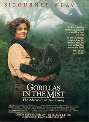 Gorile v megli - Gorillas in the Mist