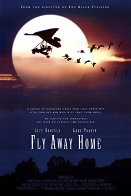 Amy in divje gosi - Fly Away Home