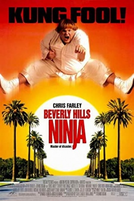 Ninja z Beverly Hillsa - Beverly Hills Ninja