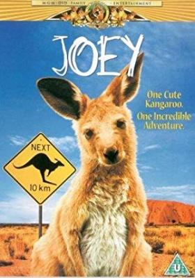 Kenguru Joey - Joey