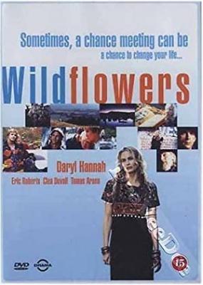 Divji roži - Wildflowers