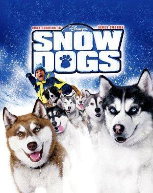 Snežni psi - Snow Dogs
