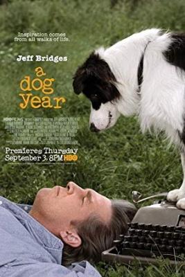 Pasje leto, film