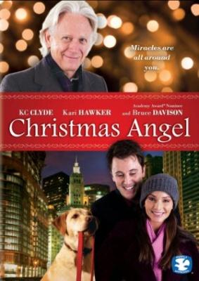 Božični angel - Christmas Angel