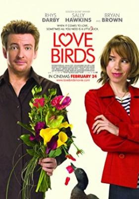 Golobčka - Love Birds