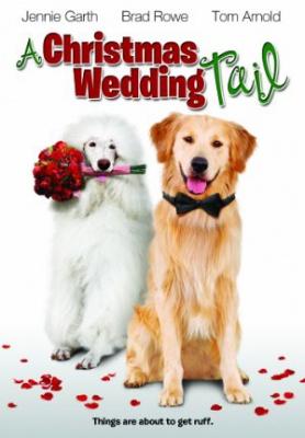 Božična poročna pravljica - A Christmas Wedding Tail
