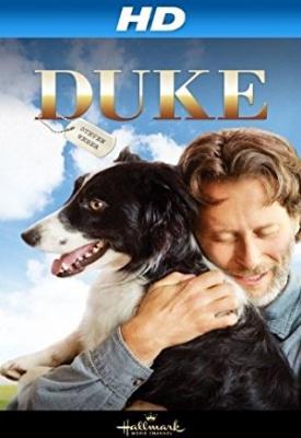 Pes po imenu Duke - Duke