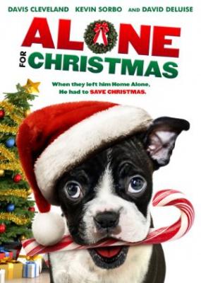 Sam za božič - Alone for Christmas