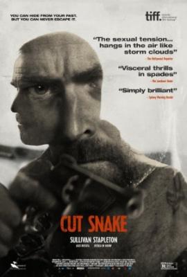Kot ris - Cut Snake