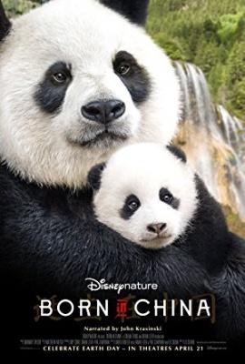 Rojeni na Kitajskem - Born in China