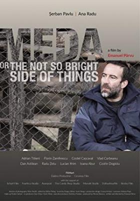 Meda ali ne tako svetla stran stvari - Meda or The Not So Bright Side of Things