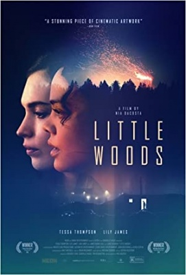 Little Woods, film