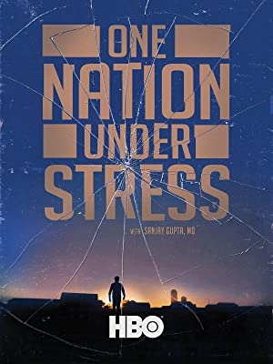 Država v stresu, film