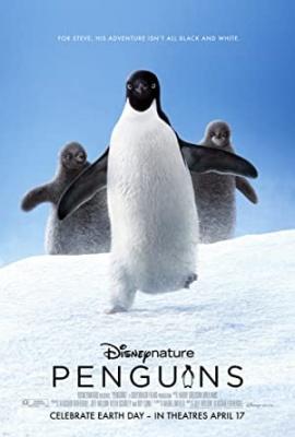 Pingvini - Penguins