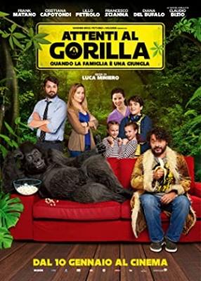 Pozor, huda gorila! - Attenti al gorilla